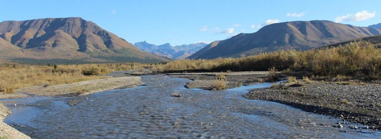 Savage River RV campground