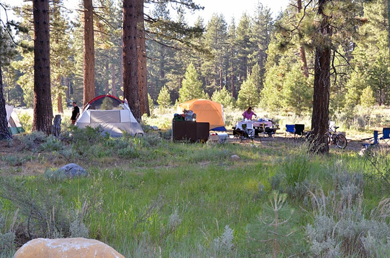 Fallen Leaf Campgrounds