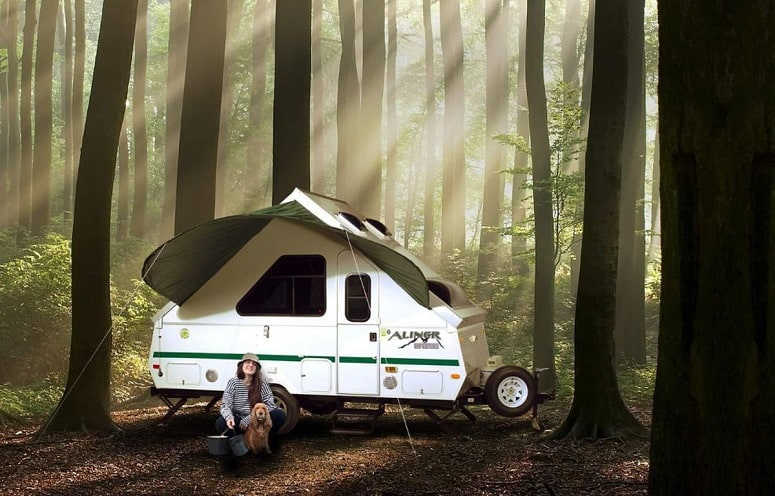 A Frame Trailer In Forest