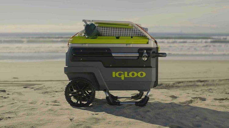 You Wouldn't Go To Summer Camping Without One: 5 Best Camping Coolers For 2021 3