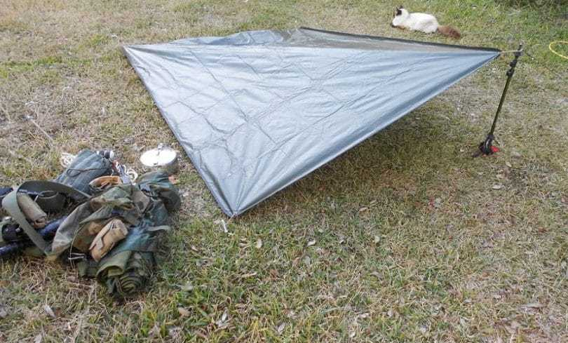 camping survivability