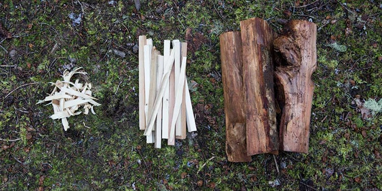 campfire different types of wood
