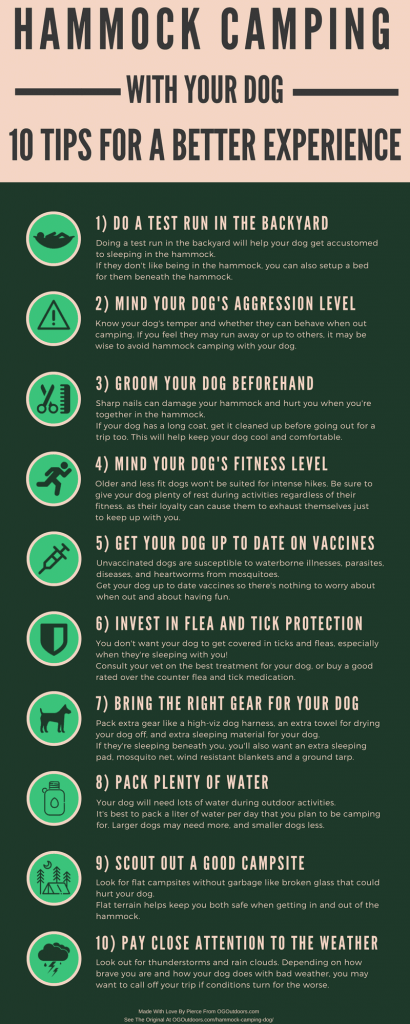 hammock-camping-with-dog-infographic