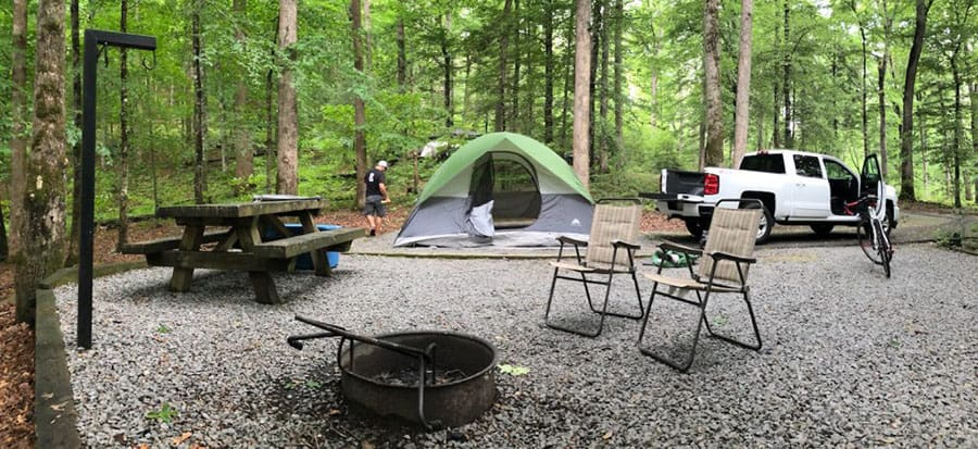 Davidson River Campground North Carolina