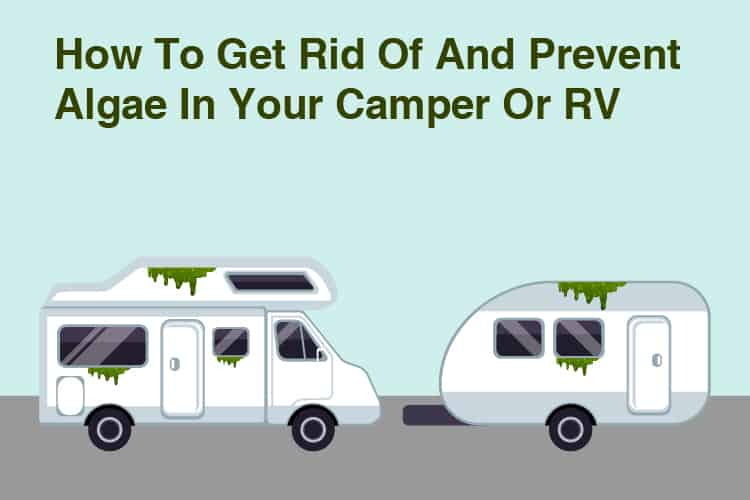 How To Get Rid Of And Prevent Algae In Your Camper Or RV 12