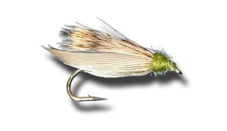 Fly Shack Skimming Caddis Fly