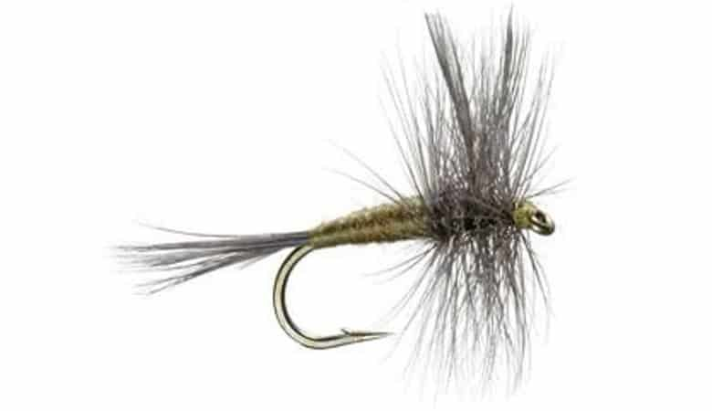 The Fly Fishing Place Blue Winged Olive Fly