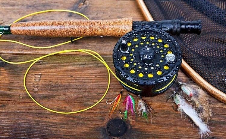 best fly for your line