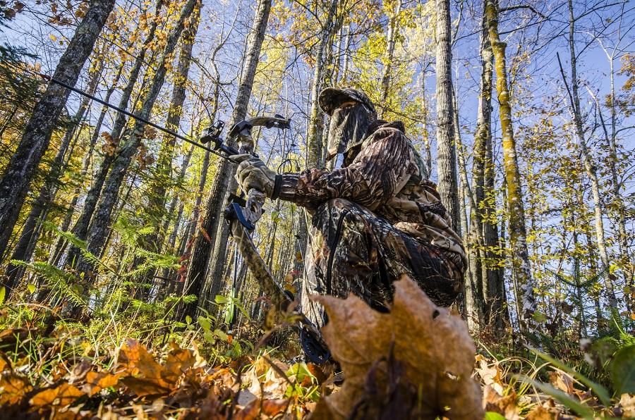 tips for bow hunting