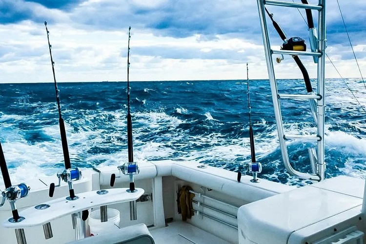 The Cost of Chartering a Boat